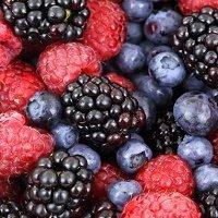 Berries200